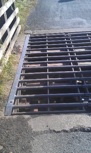 Cattle grid